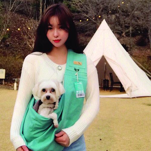 강아지 고양이 이동가방 슬링백 민트색상