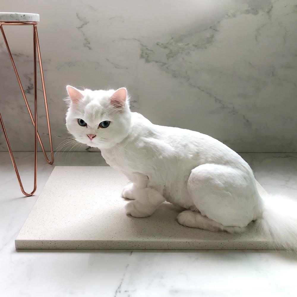 강아지 고양이 대리석 쿨매트 기본 - 베이지